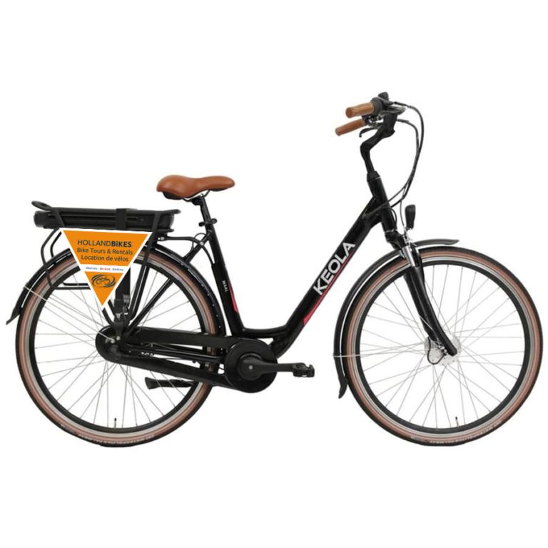 Elektrisches Niederländisches Fahrrad